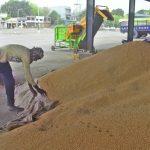 Wheat procurement: Ashok Khemka calls arhtia commission 'unfair, unjust burden'